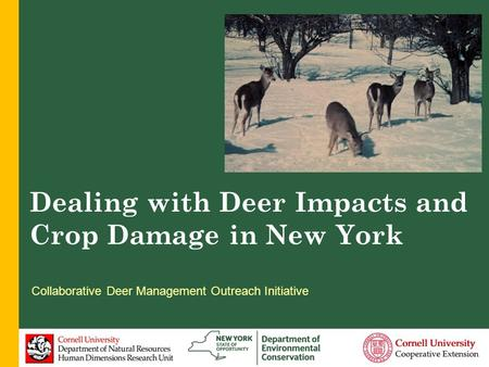 Dealing with Deer Impacts and Damage to Crops in NYS Dr. Paul D. Curtis Department of Natural Resources Cornell University, Ithaca, NY Dealing with Deer.