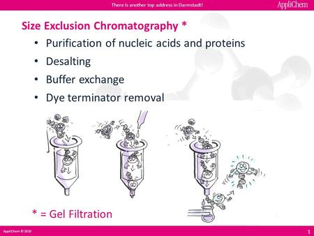 Size Exclusion Chromatography *