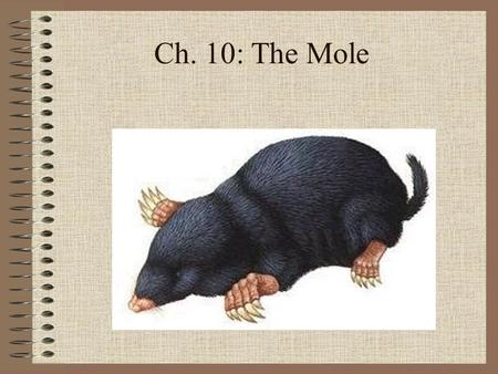 Ch. 10: The Mole. Sec. 10.1: Measuring Matter Objectives Describe how a mole is used in chemistry. Relate a mole to common counting units. Convert moles.