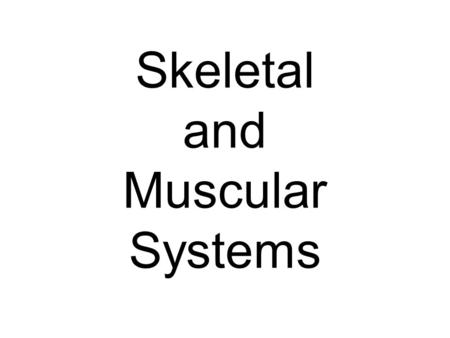 Skeletal and Muscular Systems. Skeletal System Functions Gives structure to the body Supports Muscles Protects organs.