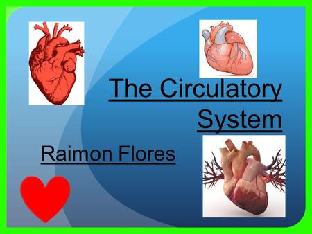 Raimon Flores. Major functions of the circulatory system Permits blood and lymph circulation to transport nutrients To nourish body and help fight diseases.