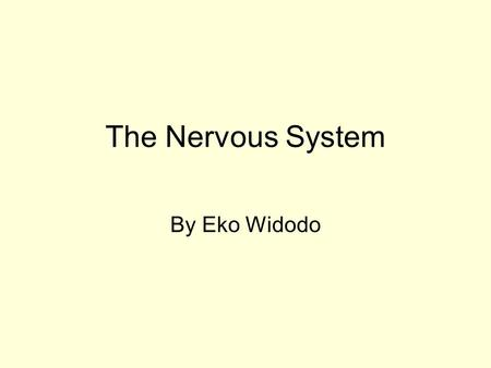 The Nervous System By Eko Widodo. The nervous system is one of the 2 control systems in our body. The nervous system is designed for fast action. It coordinates.