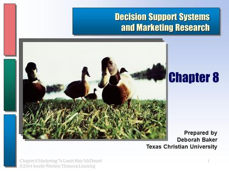1Chapter 8 Marketing 7e Lamb Hair McDaniel ©2004 South-Western/Thomson Learning Decision Support Systems and Marketing Research Prepared by Deborah Baker.