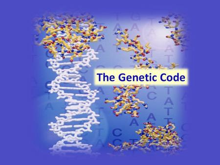 The Genetic Code. The DNA that makes up the human genome can be subdivided into information bytes called genes. Each gene encodes a unique protein that.