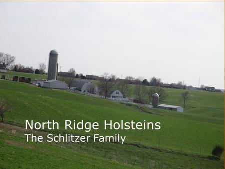 North Ridge Holsteins The Schlitzer Family. Goals  To breed the best cows  Have adequate family time.