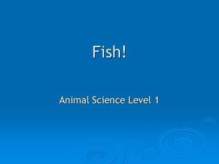Fish! Animal Science Level 1. KNOW UNDERSTAND DO! Know   Types of Fish   Basic Fish Anatomy and Care   Basic Fish Diseases Understand o Classification.