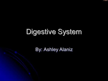Digestive System By: Ashley Alaniz. Mouth The body opening, the mouth, which a person takes in food The body opening, the mouth, which a person takes.