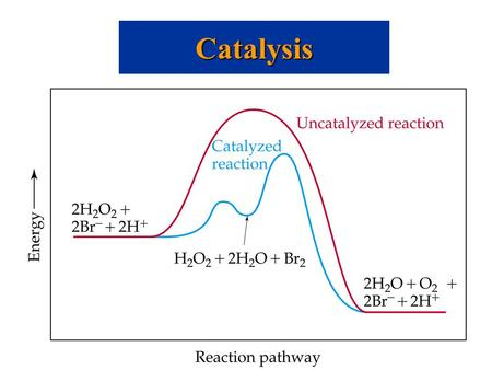Catalysis. Homogeneous Catalysis Catalysts can operate by increasing the number of effective collisions. That is, from the Arrhenius equation: catalysts.