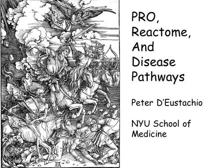 PRO, Reactome, And Disease Pathways Peter D'Eustachio NYU School of Medicine.
