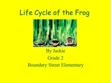 Life Cycle of the Frog By Jackie Grade 2 Boundary Street Elementary.