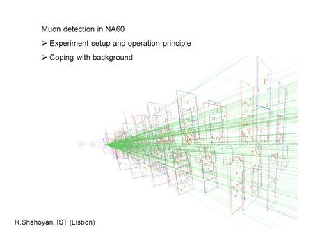Muon detection in NA60  Experiment setup and operation principle  Coping with background R.Shahoyan, IST (Lisbon)