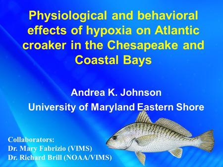 Physiological and behavioral effects of hypoxia on Atlantic croaker in the Chesapeake and Coastal Bays Andrea K. Johnson University of Maryland Eastern.