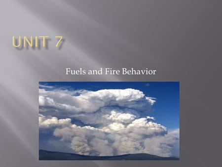 Fuels and Fire Behavior.  Identify key elements of the fire environment:  Fuels  Weather  Topography  Fire behavior.
