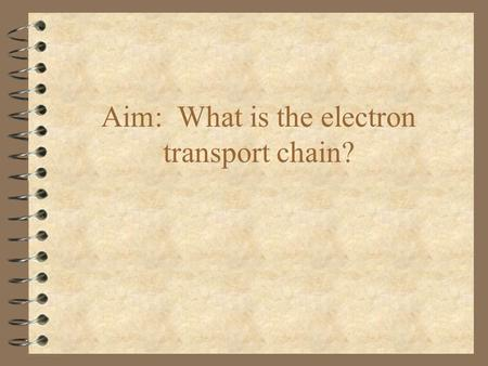 Aim: What is the electron transport chain?