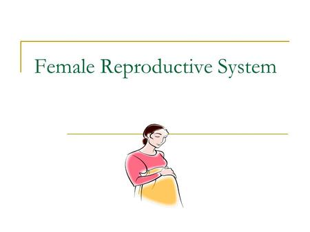 Female Reproductive System. Signs of Puberty Breasts develop Period begins Hips widen Body hair develops.