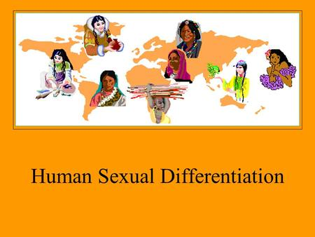 Human Sexual Differentiation
