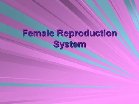 Female Reproduction System. 1. What is the female gamete (sex cell)? The egg or ovum.
