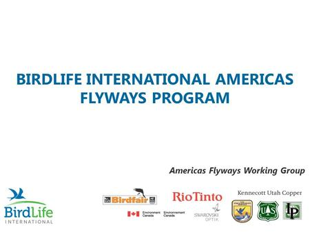 BIRDLIFE INTERNATIONAL AMERICAS FLYWAYS PROGRAM Americas Flyways Working Group.