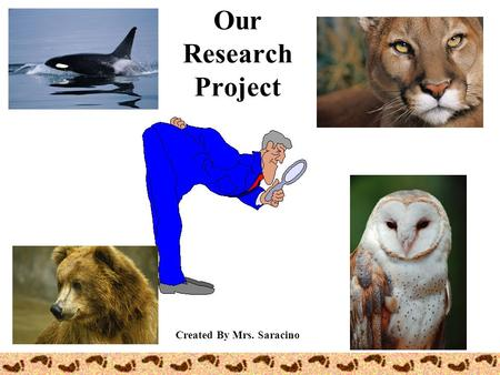 Our Research Project Created By Mrs. Saracino Research? re search To look over carefully… To find something…