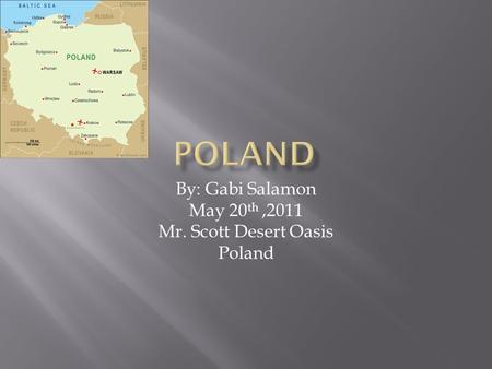 By: Gabi Salamon May 20 th,2011 Mr. Scott Desert Oasis Poland.