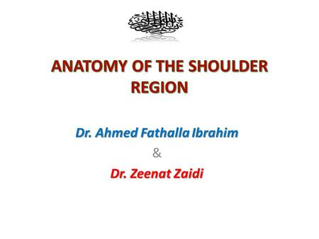 Dr. Ahmed Fathalla Ibrahim & Dr. Zeenat Zaidi. OBJECTIVES At the end of the lecture, students should: the name  List the name of muscles of the shoulder.