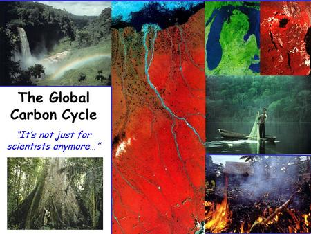 "The Global Carbon Cycle ""It's not just for scientists anymore…"""