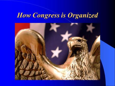 "How Congress is Organized. ""Separation of Powers"" The 3 ""branches"" of government are: (LEJ) – Legislative Branch – make the laws – Executive Branch –"