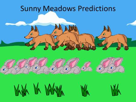 Sunny Meadows Predictions. The Game Sunny Meadows is a simulation game that allows you to choose the sizes of three populations: grass, rabbits, and foxes.