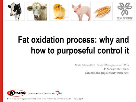 Fat oxidation process: why and how to purposeful control it