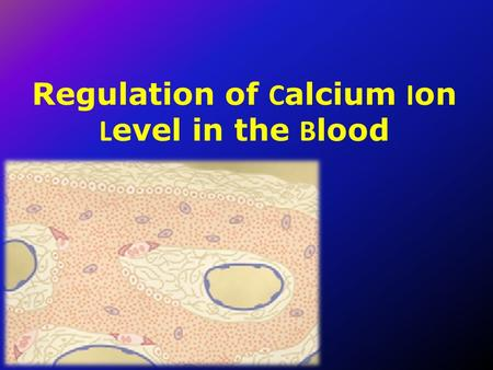 Regulation of C alcium I on L evel in the B lood.