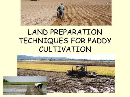 LAND PREPARATION TECHNIQUES FOR PADDY CULTIVATION.