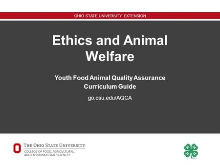 an examination of the ethics of welfare Texas an examination of the ethics of welfare engineering professional conduct and ethics examination committee for certification of sickness and disability.