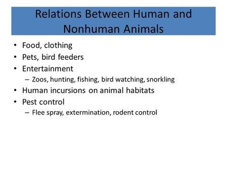 use and misuse of animals essay