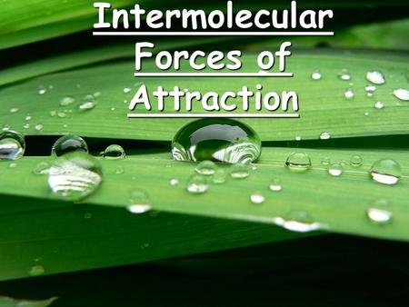 Intermolecular Forces of Attraction. Intermolecular Forces Forces that attract molecules to other molecules. These include:  Forces that attract molecules.