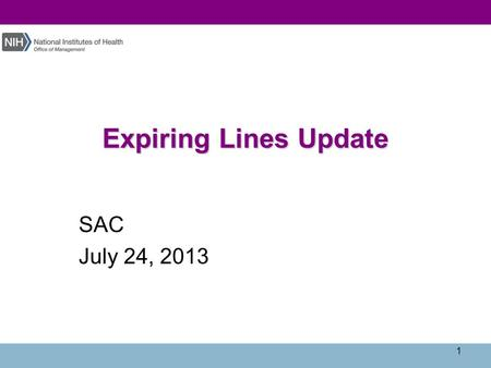 Expiring Lines Update SAC July 24, 2013 1. Agenda  Current Situation  NBS Final Close Program  Revised YE Schedule 2.