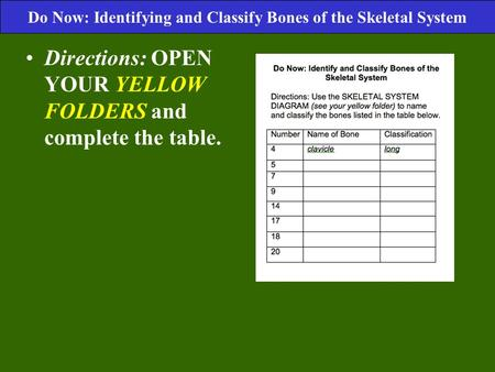 Directions: OPEN YOUR YELLOW FOLDERS and complete the table. Do Now: Identifying and Classify Bones of the Skeletal System.