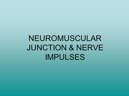 NEUROMUSCULAR JUNCTION & NERVE IMPULSES. Characteristics of Muscle Tissue 1)Irritability: ability to respond to a stimulus 2)Contractility: ability to.