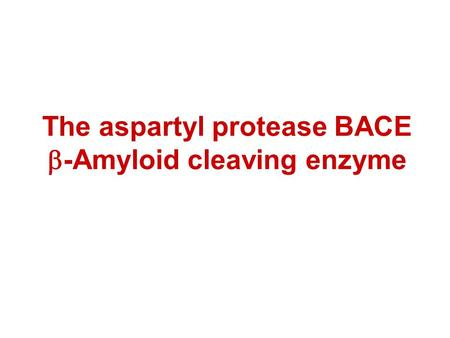 The aspartyl protease BACE  -Amyloid cleaving enzyme.