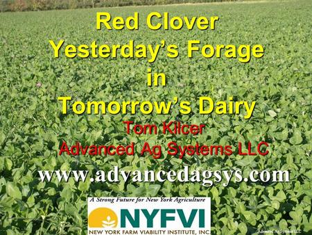 Advanced Ag Systems LLC Red Clover Yesterday's Forage in Tomorrow's Dairy Tom Kilcer Advanced Ag Systems LLC www.advancedagsys.com.