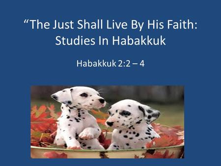"""The Just Shall Live By His Faith: Studies In Habakkuk Habakkuk 2:2 – 4."