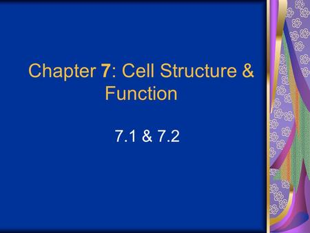 Chapter 7: Cell Structure & Function 7.1 & 7.2. Discovering the Cell For a long time, we didn't know cells existed. They were too small to see with the.