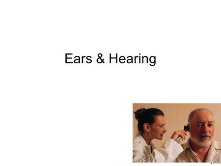 Ears & Hearing 10-34. Sound waves funneled by pinna (auricle) into external auditory meatus External auditory meatus channels sound waves to tympanic.