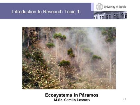 / 1 Introduction to Research Topic 1: Ecosystems in Páramos M.Sc. Camilo Lesmes.