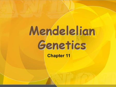 Chapter 11. Male gametes Female gametes.