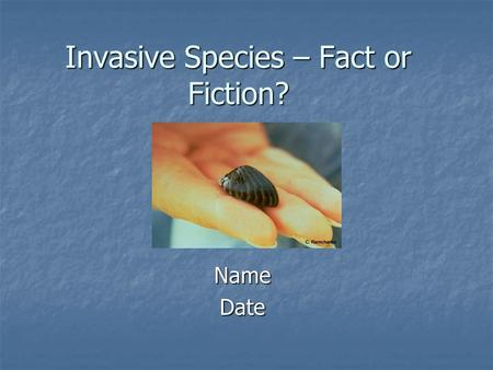 Invasive Species – Fact or Fiction? NameDate. Fact or Fiction…All non-native species are invasive. Brown trout Rainbow trout.