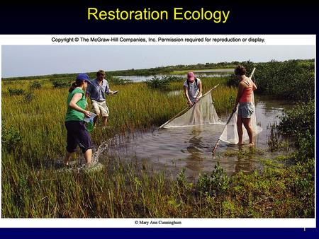 1 Restoration Ecology. 2 Helping Nature Heal Ecological restoration - to reverse degradation and restore native ecosystem Restoration to an original pristine.