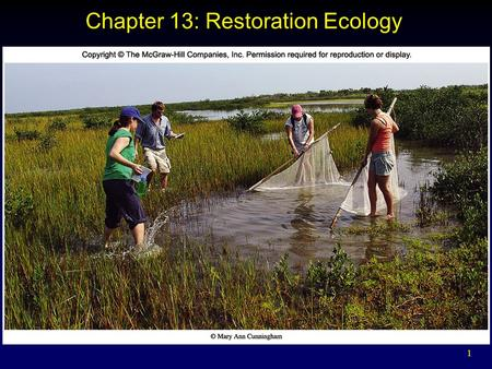 1 Chapter 13: Restoration Ecology. 2 Outline Helping Nature Heal  Ecological restoration Nature is Resilient Restoring Forests Restoring Prairies Restoring.