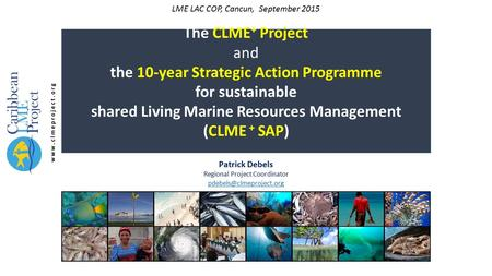 The CLME + Project and the 10-year Strategic Action Programme for sustainable shared Living Marine Resources Management (CLME + SAP) Patrick Debels Regional.