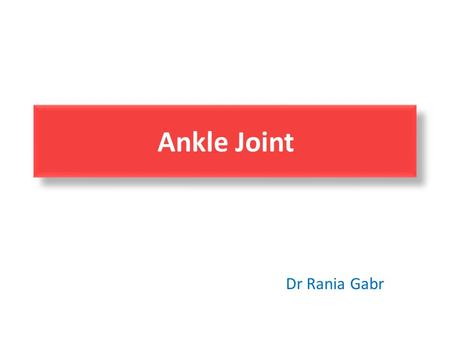 Ankle Joint Dr Rania Gabr. Ankle Joint Tibia is the larger bone and the true weight bearing bone of the leg. Medial and lateral malleoli are at.