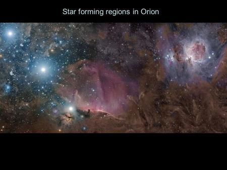 Star forming regions in Orion. What supports Cloud Cores from collapsing under their own gravity? Thermal Energy (gas pressure) Magnetic Fields Rotation.